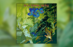 Yes - Fly From Here